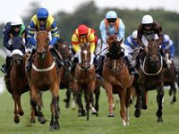 Glorious Goodwood Betting