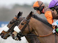 King George VI Chase Betting