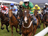 Cheltenham Festival Betting