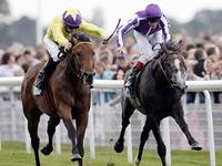 Irish Champion Stakes Betting